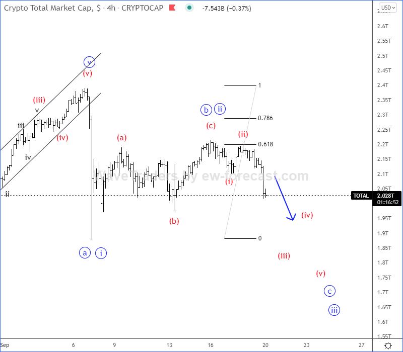 total Elliott Wave Analysis