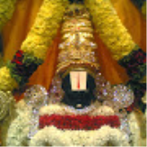 Sudha  Rani Veerla