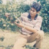 MJ  Kholid
