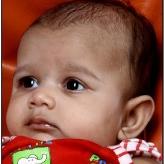 Vijay  R. Kataria