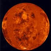 Venus  Mehta