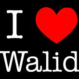 Walid  Ziade