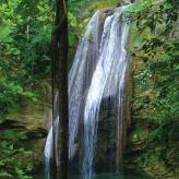 Kamarul  Jawa