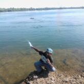 Domashy  Muitumwa
