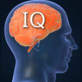 IQ  Options