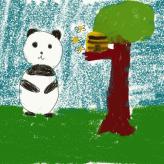 Panda  Honey