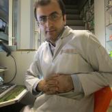 Reza  Jahanipour