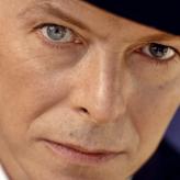 Bowie  Fan