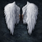 Angel31