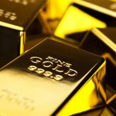 My  Gold Profit