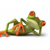 FrogBob