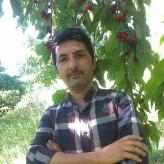 Farzad  Vahidi