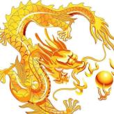 Dragon  Vision Trading
