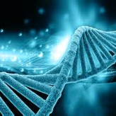 Naveed  Biotech