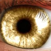 Eye4Gold